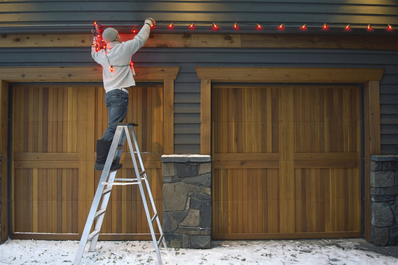 prevent pests this holiday season